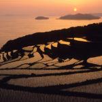 Hamanoura no Tanada, Saga