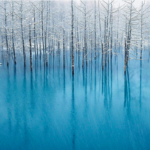 Shirogane Aoiike (the blue pond of Shirogane), Hokkaido