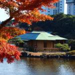 Hama-rikyu Onshi Teien (Hama-rikyu Gardens), Tokyo