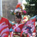 Yosakoi Matsuri (Yosakoi Festival), Kochi