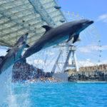 Port of Nagoya Public Aquarium, Aichi