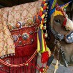 Chagu Chagu Umakko Festival (Horse Festival), Iwate