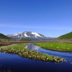 Oze National Park, Gunma
